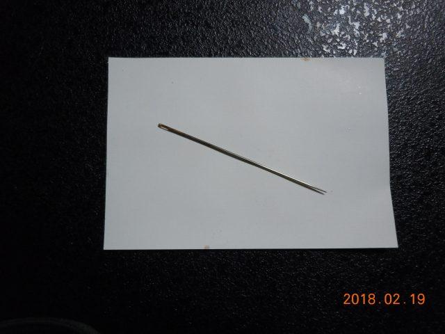 DSCN6534